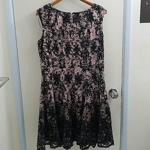 NWT Danny & Nicole lace A line dress